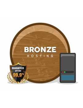 BRONZE HOSTING 1000 MB